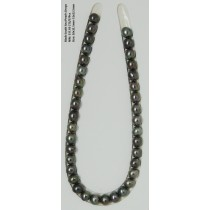 Black South Sea loose Pearls Drop