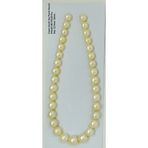 Cream South Sea Round Pearls