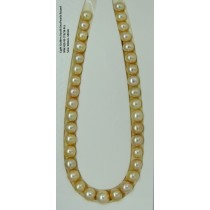 Light Golden South Sea Pearls Round